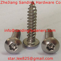 Stainless steel Anti-theft torx drive pan head self tapping screw