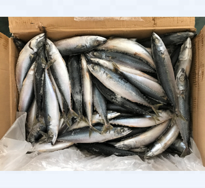 whole round good quality 200-300g sea frozen fish mackerel