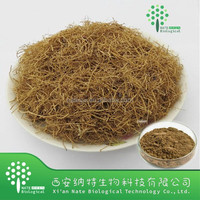 Natural Radix et Rhizoma Asari extract powder/Radix et Rhizoma Asari powder extract/Rhizoma Asari P.E. with competitive price