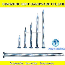 High quality black hardened steel concrete nails