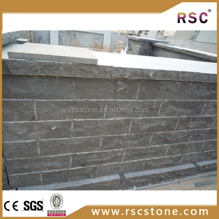 Construction building wall fossil Z P black granite