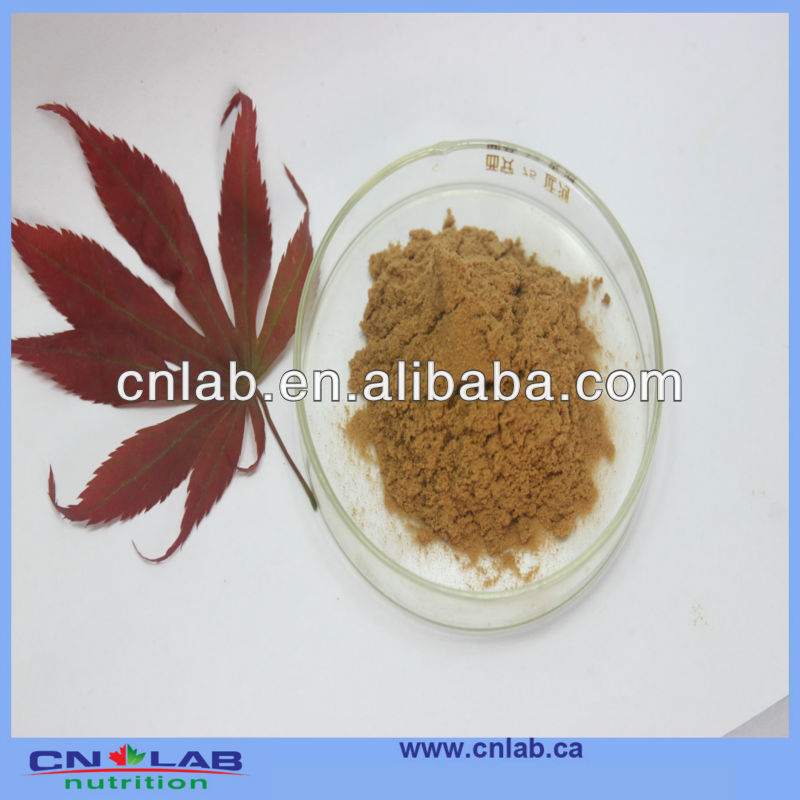 Natural Red Clover Extract 20% Isoflavones with competive price