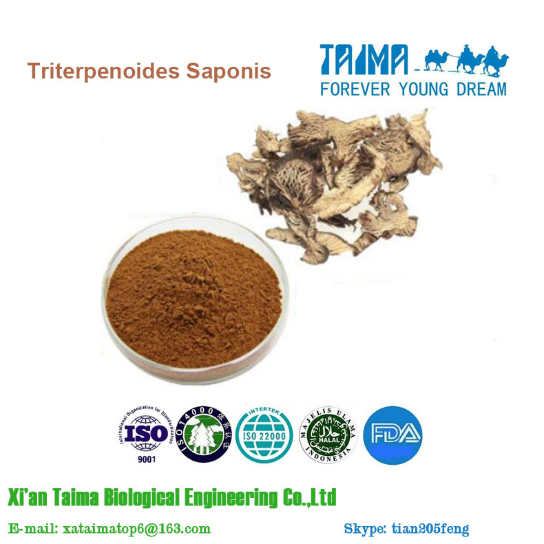Best Price Powdered Black Cohosh Extract / Triterpenoid saponis 2.5% - 8%(HPLC)
