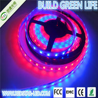 wifi controlled addressable battery powered led strip 5050 led strip digital magic dream color rgb with ws2801(tj-5050-60leds)