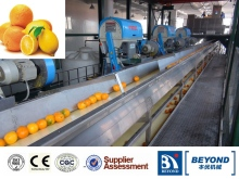 fresh fruit orange processing line