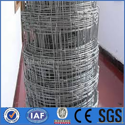 hot galvanized farm/fielddeer fence(delivery fast factory price)