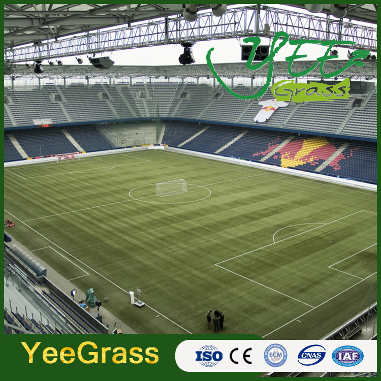 Special hot sell soccer ball grass