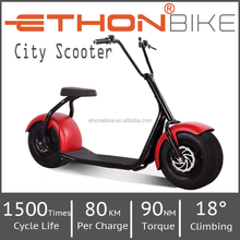 Ethon Bike city scooter 1000W long range Electric Scooter, Electric motorcycle