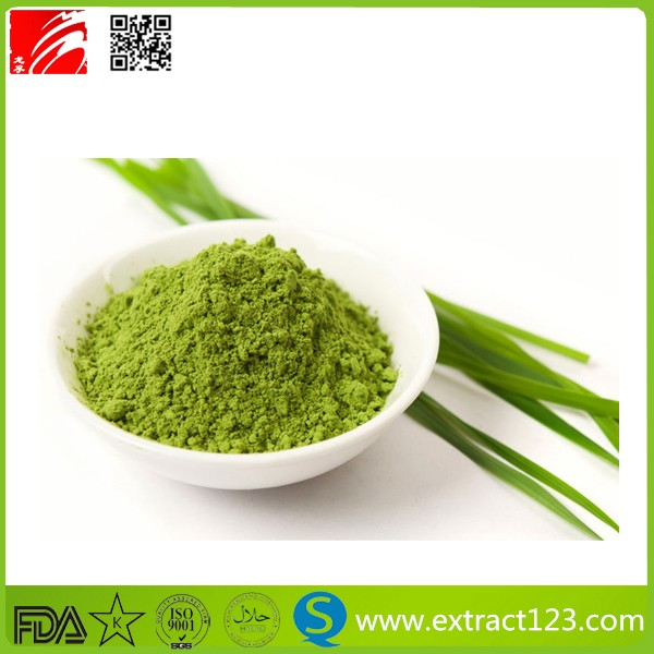 Health Care Raw Material Wheat Grass Powder