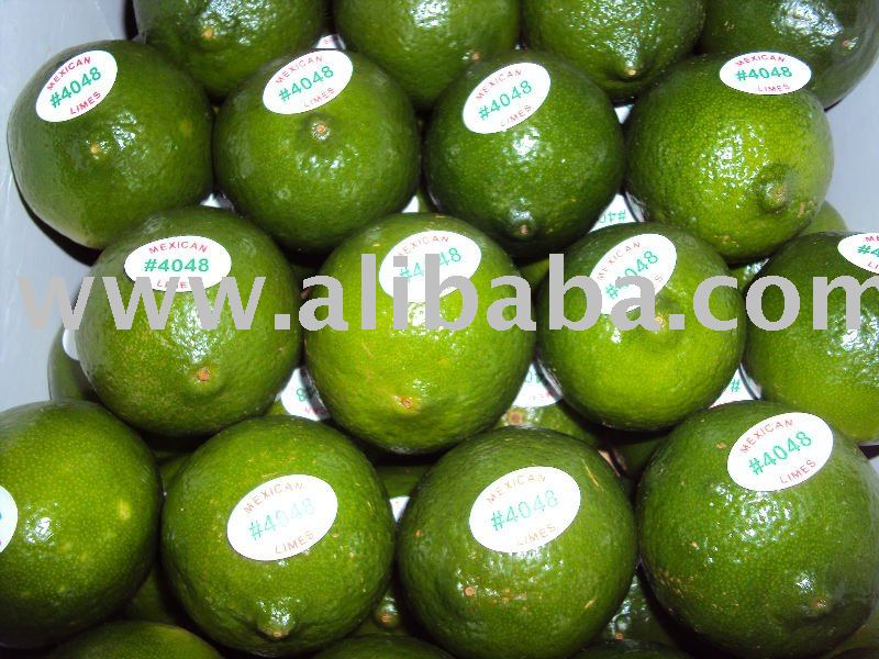 Fresh persian seedless lime
