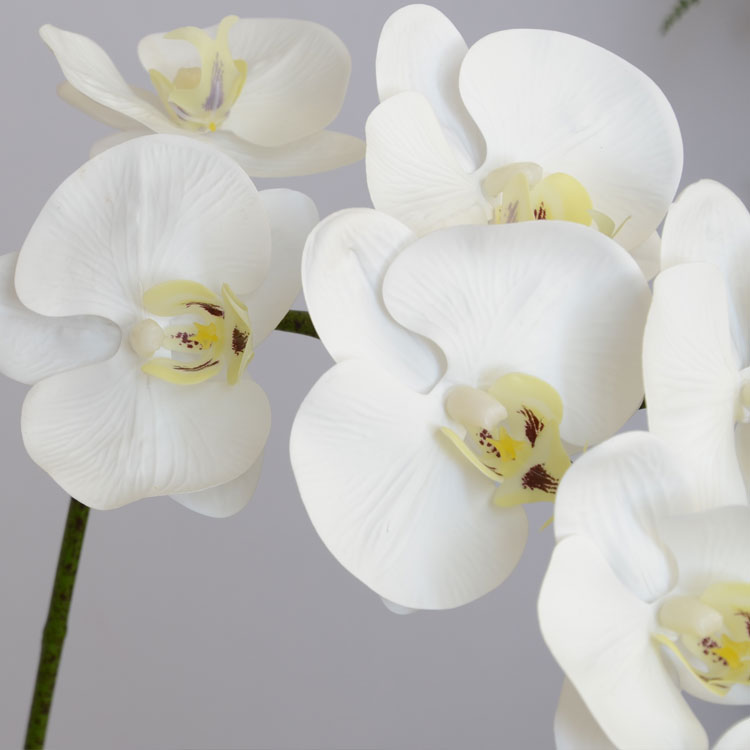 LS17061107 foshan longsun manufacturer wholesale high imitated fake real-touch artificial orchid <strong>flower</strong>