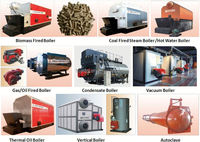coal or gas or oil or biomass fired boiler equipment