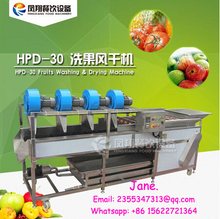 HPD-30 Fruits Washing and Drying Machine, Fruits Washer and Dehydrator