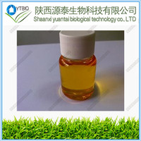 Hot sales stevioside stevia extract neotame powder Natural angelica oil 98% /angelica extract