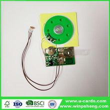 Custom programmable recordable sound module for toy