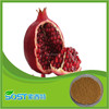 top quality pure natural pomegranate peel extract