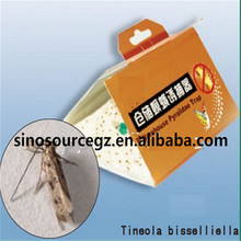 Ephestia elutella paper glue trap,carry trap,Safe,easy to use