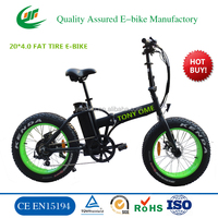20 inch 48V snow electric fat bike folding electric vehicle (TDN00Z)