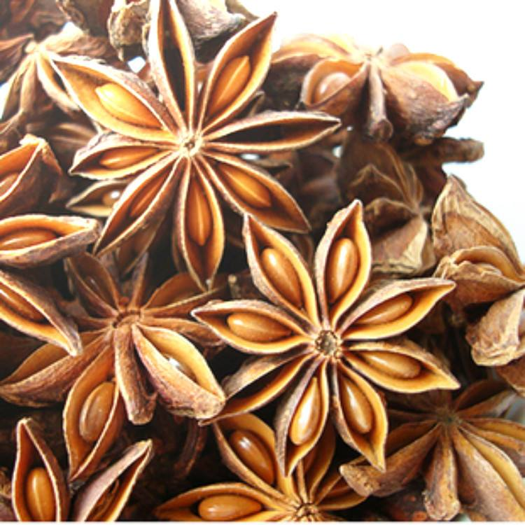 BEST GRADE OF SESONING RAW MATERIAL STAR ANISE SUPPLY