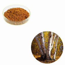 100% Pure Natural White Birch Bark Extract
