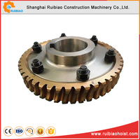 top quality plastic worm gear for sale
