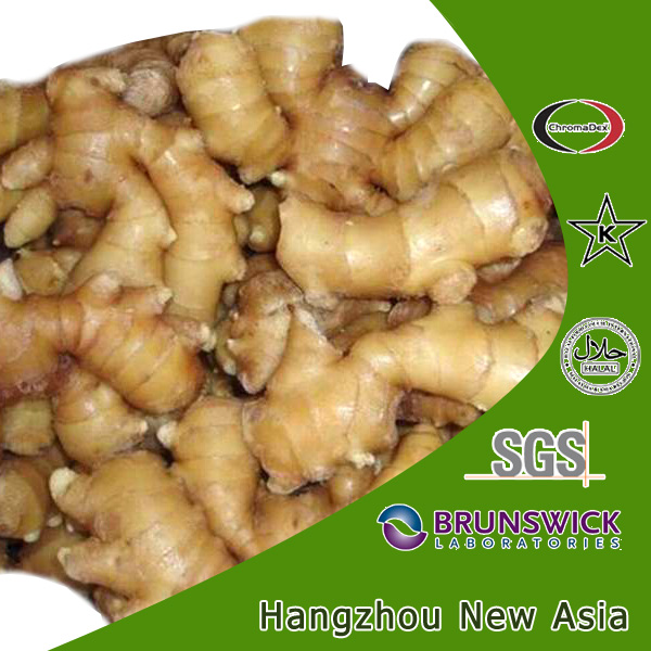 extraction of ginger oleoresin