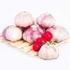 /product-detail/natural-white-garlic-in-china-5-0cm-62024203796.html