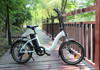 250W electric pocket bike foldable with 36V lithium battery