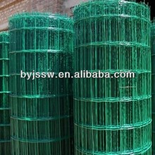 euro fence/holland wire mesh