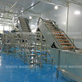 Turn key solution for industrial natural fruit juice production line made in China