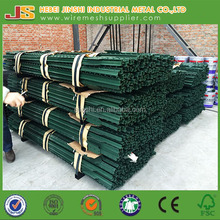 green painted Steel Fence T post wholesale for cattle steel fence