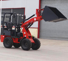 Multifunctional D25 with quick change electric loader