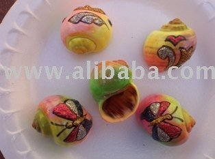 Aquarium Hermit crab shells painted