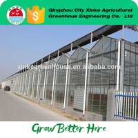Made In China Multi Span Agriculture