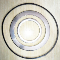 products seal Gasket Graphite Spiral Wound Gaskets Gasket Seal