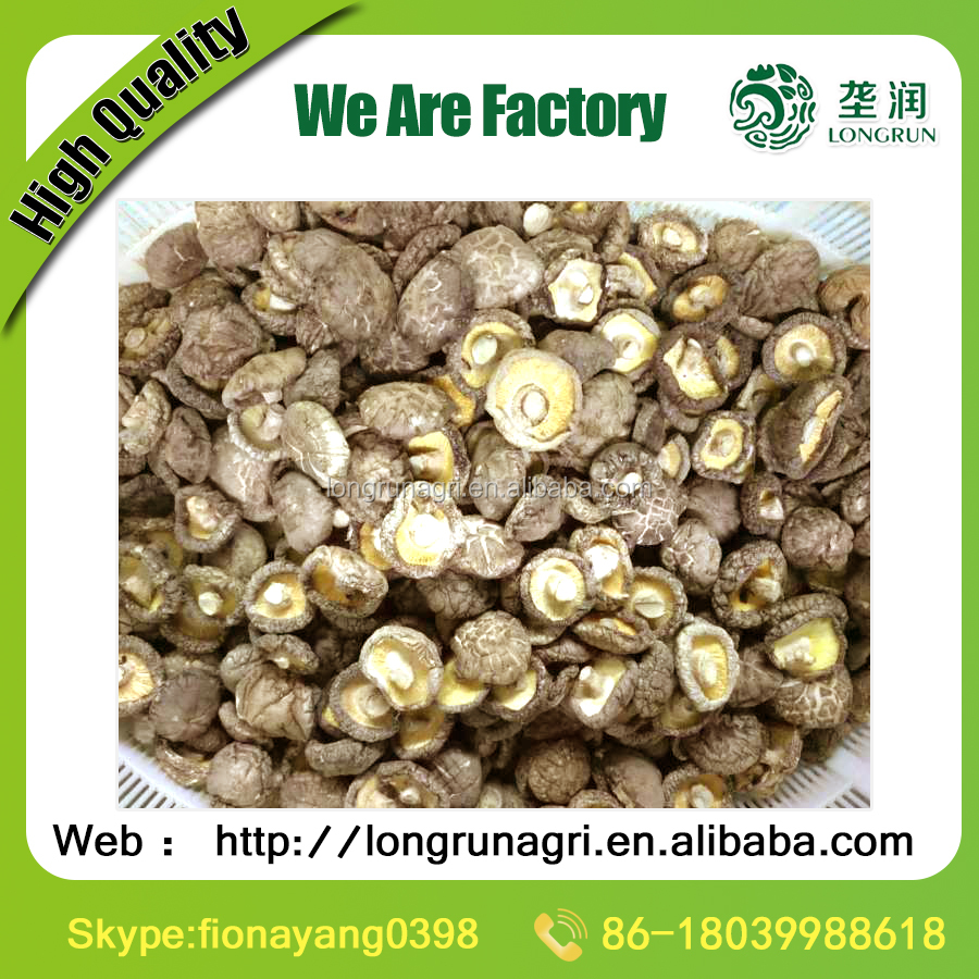 Hot Sales Dried Shiitake mushrooms 1 KG