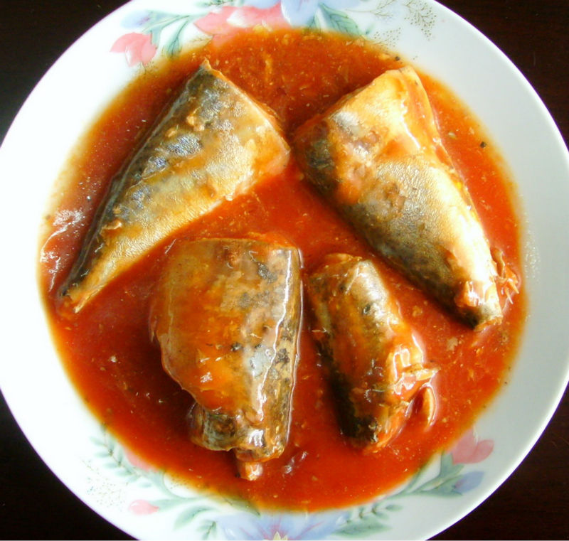 High Quality 155g,425g Canned Mackerel in tomato sauce