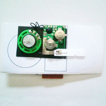 Custom made mini recordable sound modules