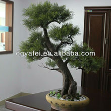 Chinese podocarpus,Artificial bonsai podocarpus trees