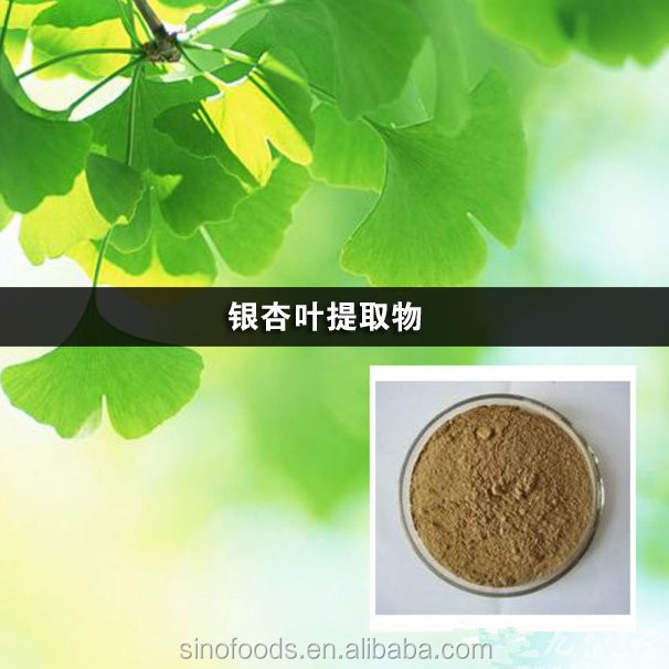 Ginkgo biloba Extract Ginko flavones Terpenlacton Herbal extract