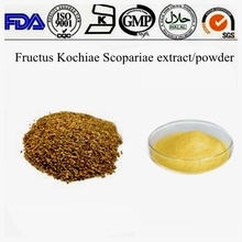 2014 new batch herb raw material Fructus Kochiae/Belvedere Fruit