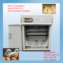brand WQ-176 holding 176 chicken gas incubator for poultry