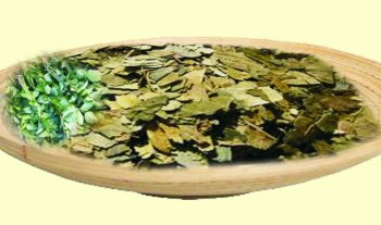 Sweet Neem Leaves, Kadi Patta, Curry Leaves Powder