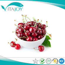 High-quality Tart Cherry Powder / High Quality Acerola Cherry Extract Powder/ High Quality Black Cherry