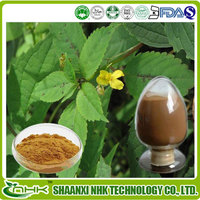 USP Standard High Quality Stinging Nettle Root Extract