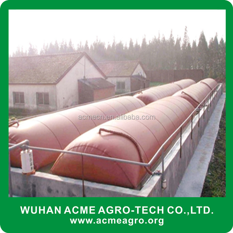 ACME Floating Cover China Biogas Methane Plant