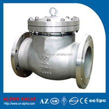 Stainless Steel CF8M Swing Check Valve