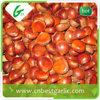 Price chinese raw wholesale frozen chestnuts