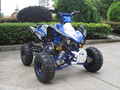 110CC 125CC QUAD 4 STROKE WITH REVERSE WITH CE