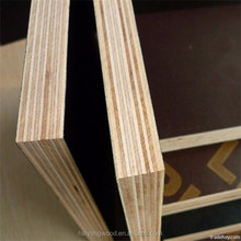 12mm 15mm 18mm film face plywood for construction in Linyi City